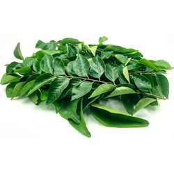 Picture of Curry Leaves Per Packet