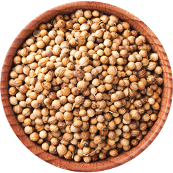Picture of Shudh Coriander Seeds 14oz