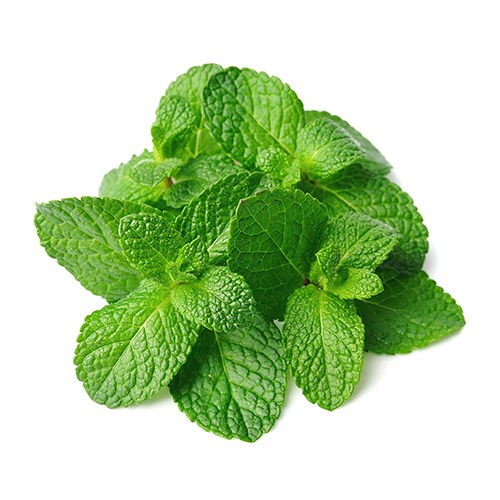 Picture of Mint Leaves /pc.