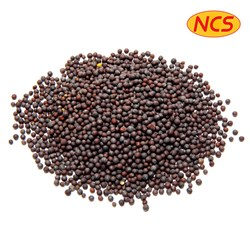 Picture of Nature's Choice Mustard Seeds Big 7oz