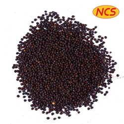 Picture of Nature's Choice Mustard Seeds Fine 14oz
