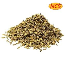 Picture of Ncs Roasted Fennel Seeds 100gm