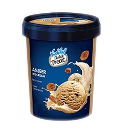Picture of Vadilal Quick Treat Anjeer Ice Cream 100mL