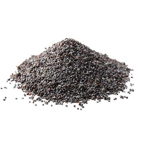 Picture of Shudh Poppy Seeds 3.5oz