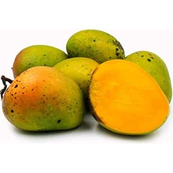 Picture of Mango Haden