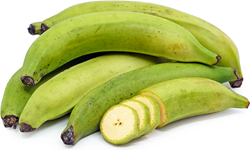 Picture of Banana Plantain