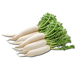 Picture of Daikon Mulee