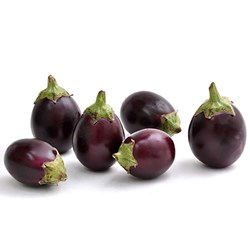 Picture of Indian Eggplant