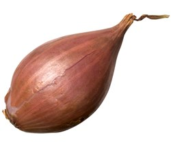 Picture of Shallots