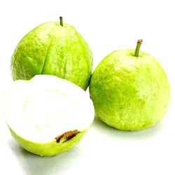 Picture of Fresh Guava