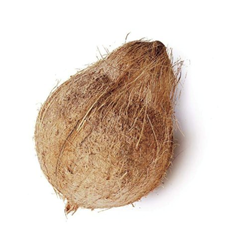 Picture of Coconut with Husk /pc
