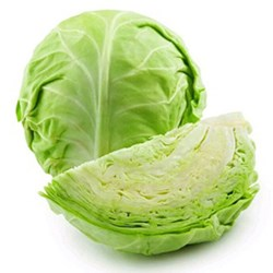 Picture of Cabbage Green /pc.