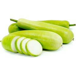 Picture of Squash Opo (Dudhi)